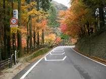 ♪ゆっくりおくつろぎ(奥津路)紅葉プラン♪ 秋限定