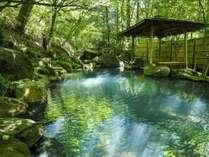 深緑に包まれながら、木漏れ日の中で入る温泉はまさに至福の癒し。