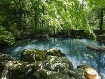 木漏れ日の中で、虫の音を聞きながらの入浴はまさに至福のひととき。