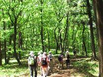 緑に囲まれた自然散策コース。ノルディックウォークもおすすめ!