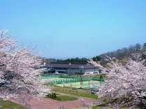 満開の桜が美しい春の外観