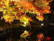 「長谷寺紅葉ライトアップ夜間特別拝観」チケット&送迎付♪夕食は「鎌倉フレンチ」(夕朝食付)