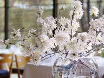 【期間限定】春のフレンチ桜ディナーを楽しむ(夕朝食付)