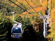 紅葉のトンネル抜けていざ山頂へ 函館七飯ゴンドラ紅葉の空中散歩