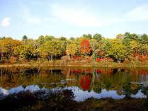 *【周辺(秋)】湖面に映える紅葉は、まさに絶景です。