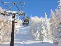 **【志賀高原スキー場】横手山などではスノーモンスターもご覧いただけます!