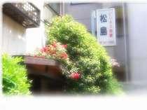ビジネス旅館松島 (東京都)