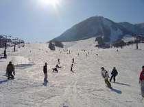 木島平スキー場広々としたゲレンデはお子様から年配の方まで楽しめます。