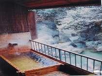 源泉の宿 鈍川温泉ホテル画像1