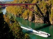 【恵那峡遊覧船】恵那峡の風景美を堪能するなら、恵那峡遊覧船、水面から見上げる景色は迫力満点。