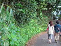 カップルにおすすめ!【鎌倉彫夫婦箸付き】二人だけの時間を鎌倉で♪(夕朝食付き)