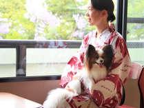 *ワンちゃんと一緒に泊まれるお部屋もございます♪和室で愛犬と一緒にお寛ぎ下さい。