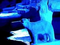 天王寺動物園ナイトZOOチケット付き 夜の動物を覗き見!天王寺動物園まで歩いて5分《朝食付》