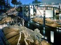 [☆30]選べる早期特典付★恐竜博物館チケット付