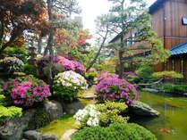 4月下旬から5月上旬の春先にはツツジが咲き誇ります