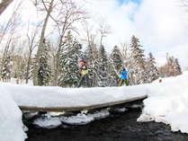 【スノーシュー】DE雪の森さんぽ♪ガイド案内付で安心★1泊2食付