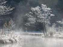 11月の上高地。霧氷に染まる田代池