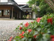 *【外観】木造りの美と粋を今に伝える純和風旅館です。