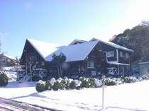 初雪のログペンション