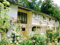 ぶるーポピー の庭はバラやハーブ、草花でいっぱいです。