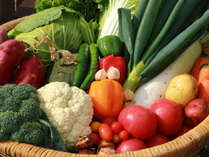 """*自家栽培の無農薬野菜は野菜の""""本来の味""""がします。≪本物の野菜≫を体験しませんか?"""
