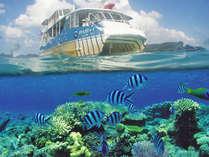 コーラルビュークルージング:海中の熱帯魚とサンゴ礁を満喫♪