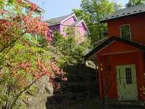 新館1Fから見た春の景色。周囲のつつじに囲まれ暖かい春を感じますね。