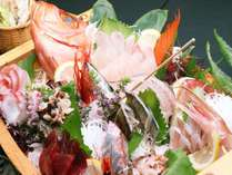 8種の魚介類を豪勢に船盛でお出しします。