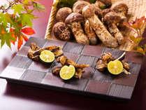 炭火焼で香り高く焼き上げた「炭火焼松茸」,長野県,ホテルアンビエント蓼科コテージ