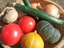 自家農園では、お米/野菜を栽培。無農薬農法でエコファーム認証もとっています。