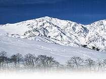 新雪の八方尾根