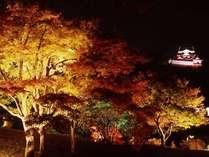 錦秋の玄宮園ライトアップ(彦根城内) 2019年11月16日~12月1日 18:00~21:00