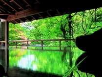 朝のみ解放される渓流沿いの野天風呂。自然いっぱいの中での早朝湯浴みをどうぞ