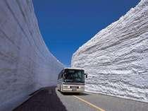 皆さんご存知の雪の大谷