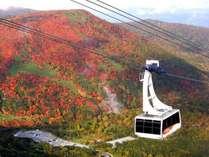 初夏から秋まで、新緑に始まり、紅葉も楽しめる那須ロープウェイです!