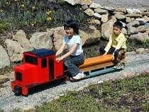 【体験】★お子様歓迎★じゃらん限定★夏休みわんぱく大冒険★ミニSL乗車体験プラン~電車に乗ってみよう