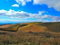 秋のビーナスライン。美しく秋色に染まった車山高原をお楽しみください。