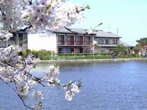 白鳥の宿 割烹旅館 ますがた荘