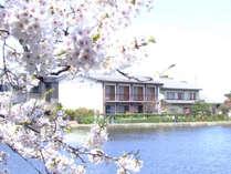 白鳥の宿 割烹旅館 ますがた荘 (新潟県)