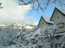 冬の横からの外観