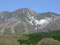 6月1日より山開きの秋田駒ヶ岳。コマクサをはじめチングルマ、エゾツツジなど沢山の花が咲く花の山です。