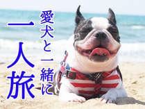 【愛犬と一緒に一人旅!】こだわり会席料理を堪能◆自由な旅で心身ともにリフレッシュ♪【1泊2食】