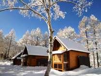 冬のどんぐり村。雪にすっぽりと包まれて、静寂の時が流れます。