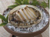 海女さんの町で食す珠玉の食感