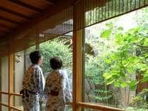 中庭を眺めるイメージ。のどかな気持ちで、お過ごしください。  ♪~宿クーポン発行中。