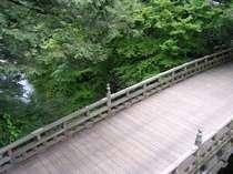 新緑とこおろぎ橋をお部屋で楽しむ