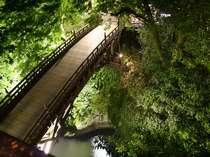 客室から夜のこおろぎ橋