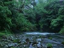 山中温泉の景勝地、こおろぎ橋袂に佇む全7室オーナーシェフの宿。加賀温泉駅より30分
