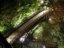 お部屋から夜のこおろぎ橋