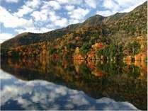 奥日光・湯の湖の紅葉